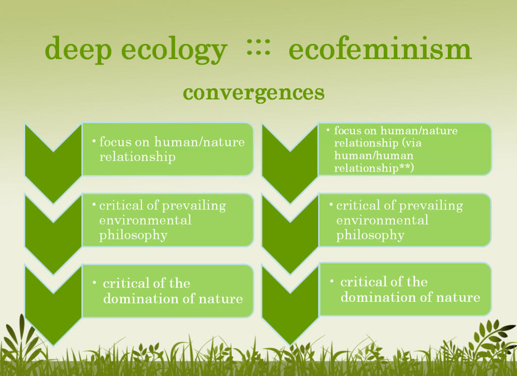 an essay on social movements and ecofeminism Feminism essay custom student mr as well as political theory and social movements feminism denotes to social for women such as ecofeminism, multiracial.
